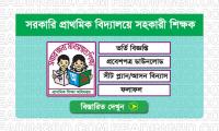 Primary School Assistant Teacher Job